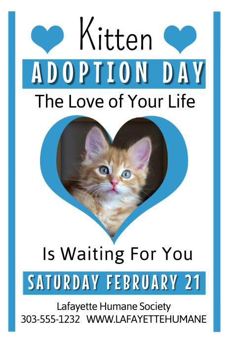 puppy for sale flyer templates - kitten adoption template postermywall