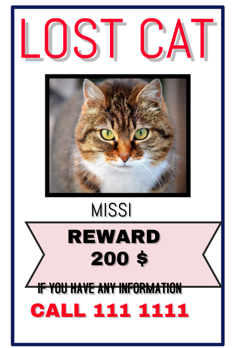 Design Poster Lost Cat