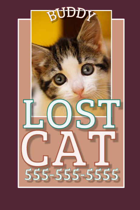 lost cat template postermywall. Black Bedroom Furniture Sets. Home Design Ideas