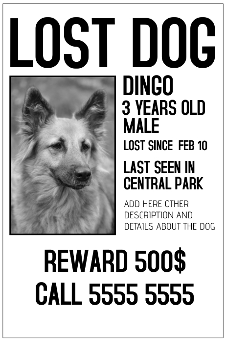 Doc12751650 Found Dog Poster Template Found Dog Poster – Found Poster Template