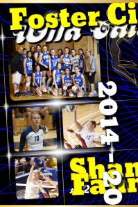 Sample Volleyball Posters
