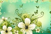 romantic poster background with white flowers